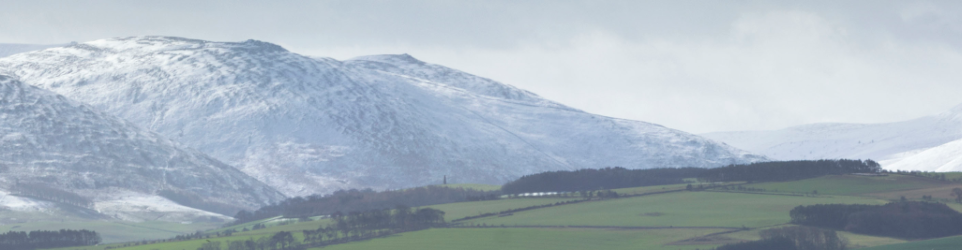 Northumbrian Language Society